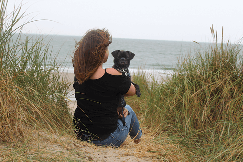 Urlaub mit Hund in Holland am Meer