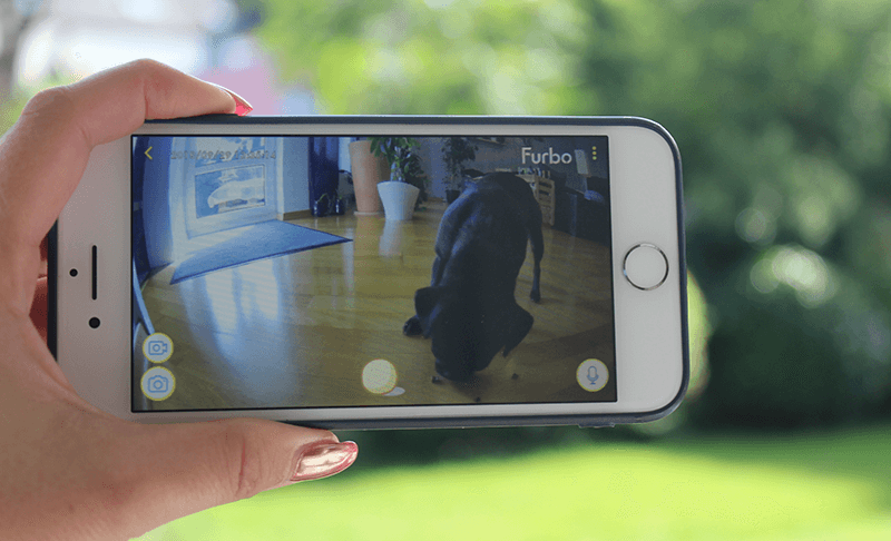 Mit der Furbo Hundekamera von Unterwegs den Hund zuhause beobachten