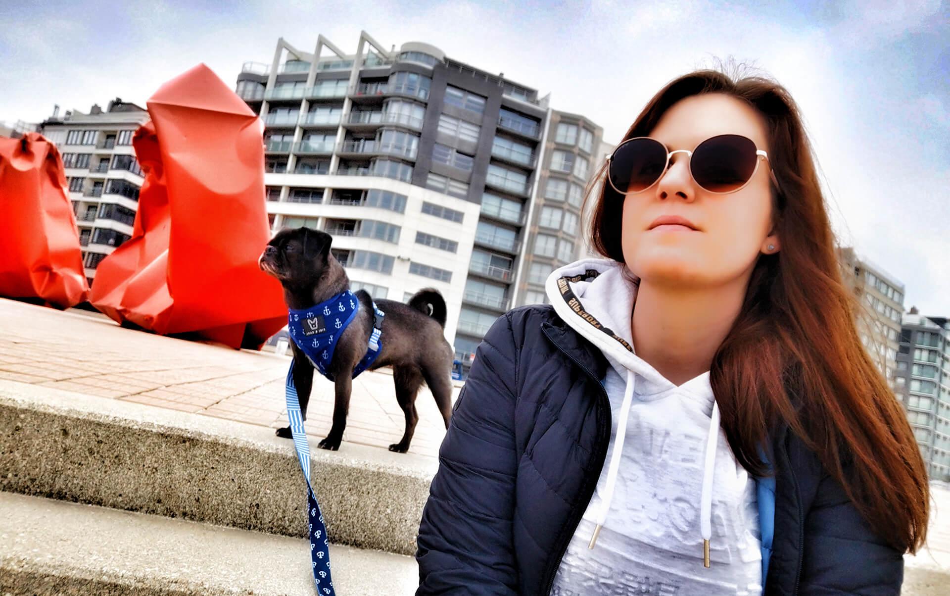 10 Gründe warum du mit deinem Hund reisen solltest