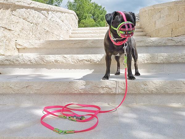 Bumas Maulkorb für kleine Hunde