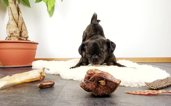 Gesunde Hundesnacks